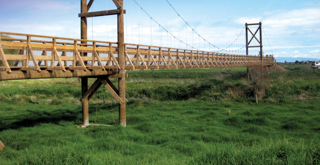 Hauraki Rail Trail Bridges - Sustainability Award Finalist